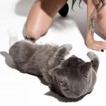 Katie Pfeffer Cat 9