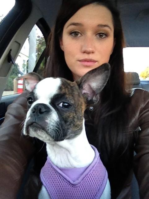 jade_puppy