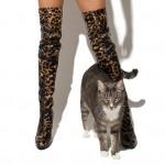 Allie Haze Cat 1